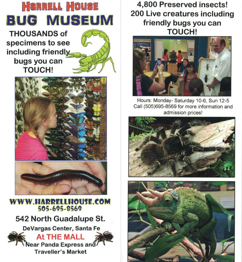 Harrell House Bug Museum brochure