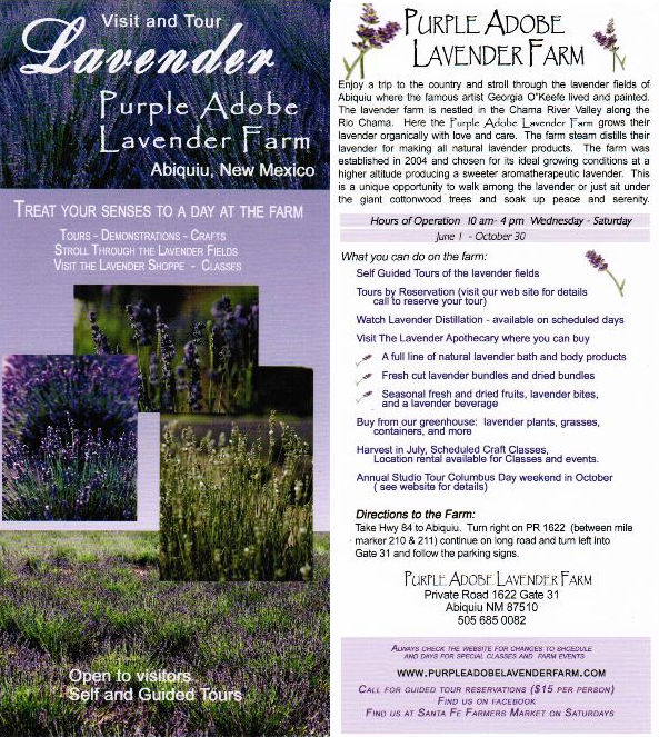 Purple Adobe Lavender Farm brochure